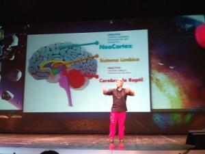 Partes del cerebro - @kokebcn (Congreso Web Zaragoza)
